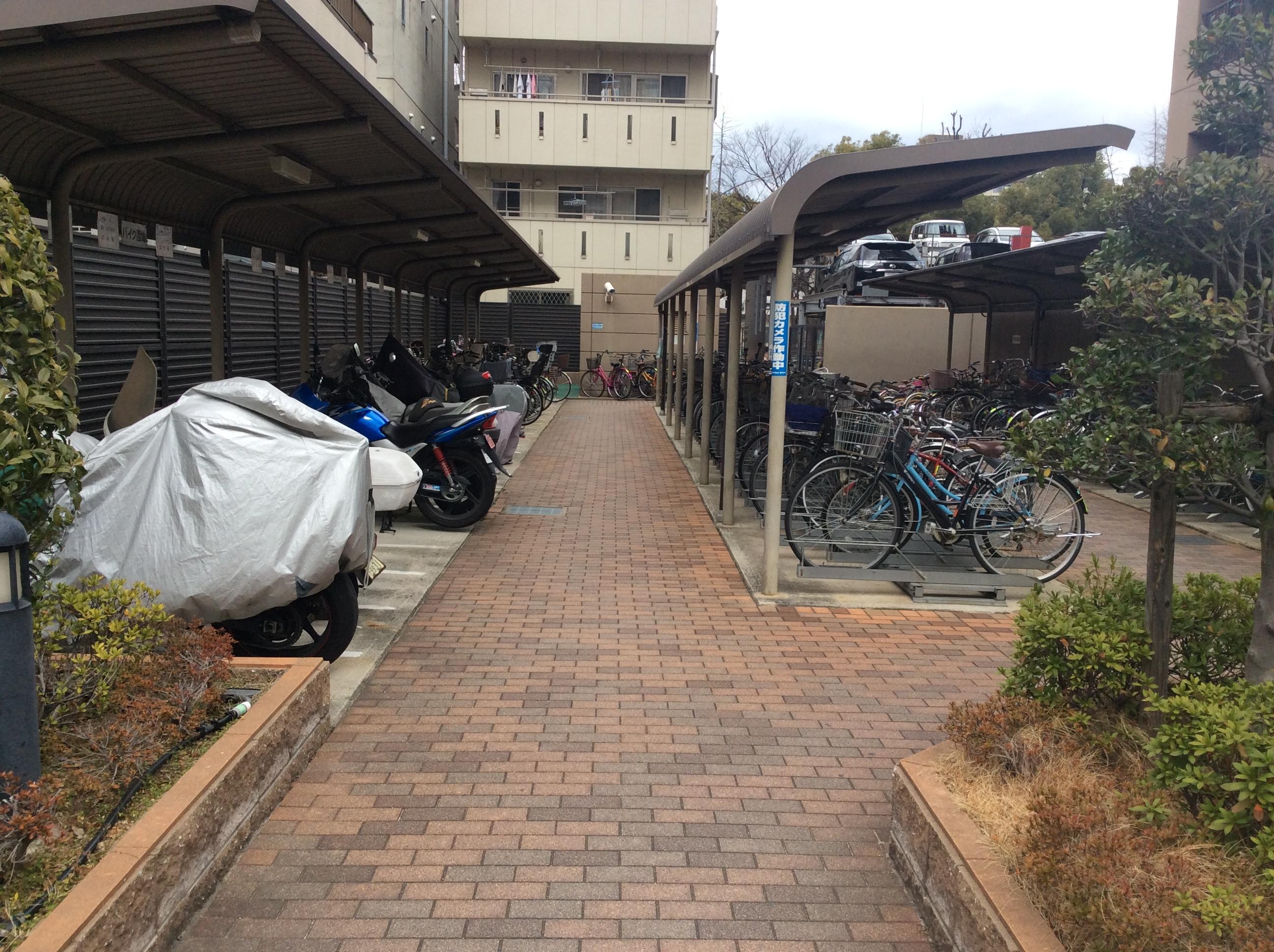 駐輪場(周辺)